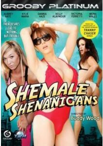 Shemale Shenanigans